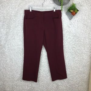 Dress Barn Burgundy Dress Pants | 16P